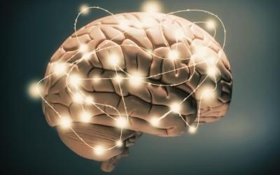 Neuroplasticitatea ne poate ajuta sa descoperim fericirea