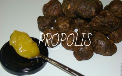 """Propolis – un """"cocteil"""" de substanţe vindecătoare"""