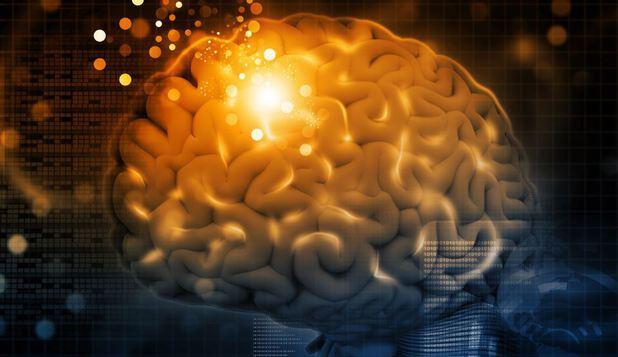 Creierul se transformă! Neuroplasticitatea – capacitatea miraculoasa a creierului.