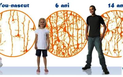 """""""Explozie neuronala"""" la copii si adolescenti"""